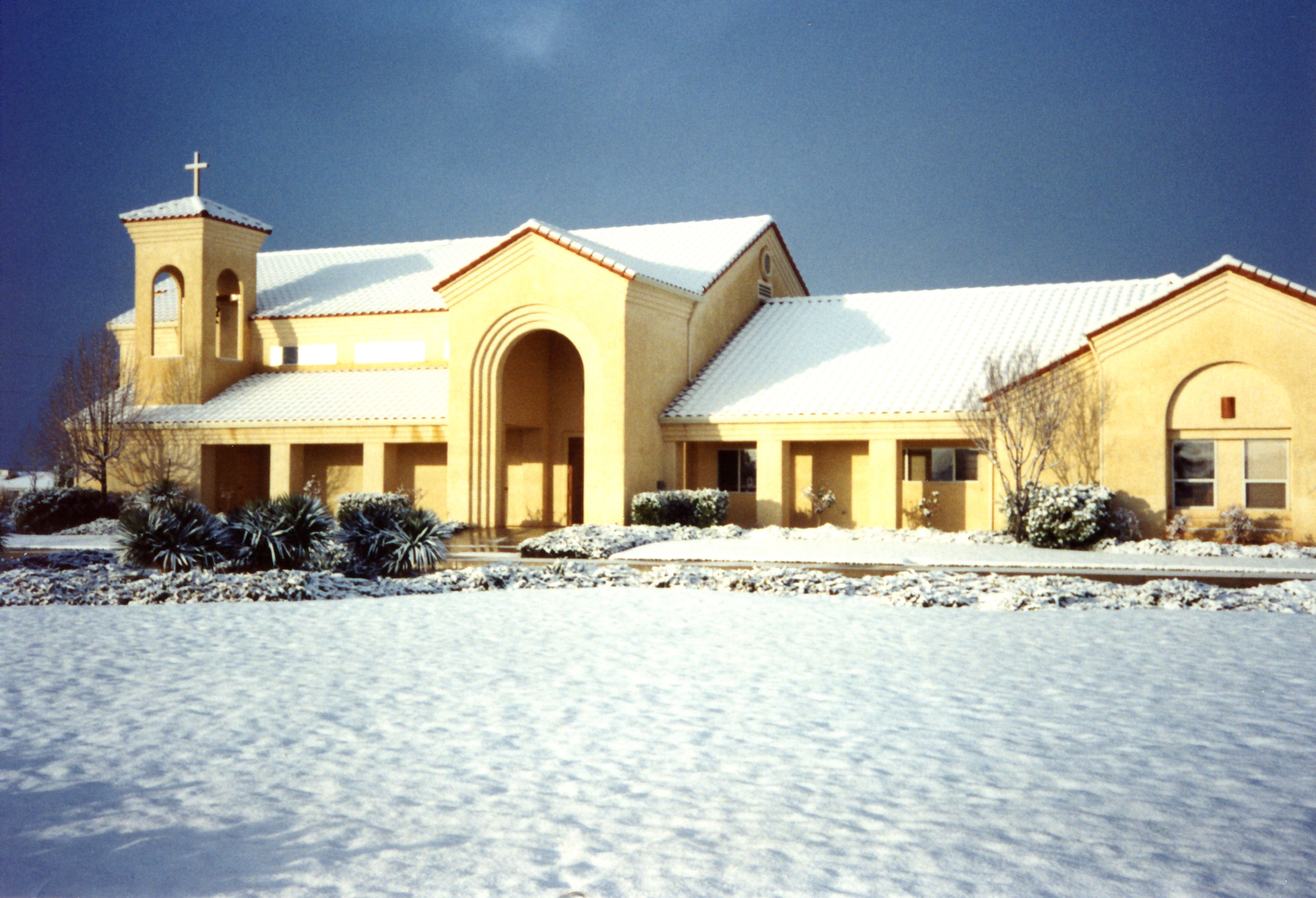 GSPC_in_the_snow.jpg